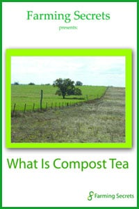 What-is-compost-tea