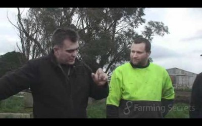 Camperdown Dairy farmers get great results from Compost Part 2 of 4