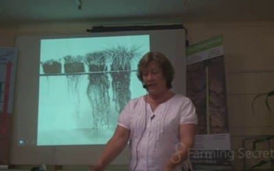 Dr Christine Jones – How overgrazing affects root depth and its follow on effects