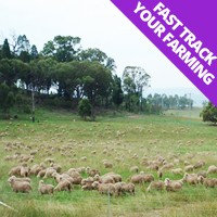 Fast Track Your Farming
