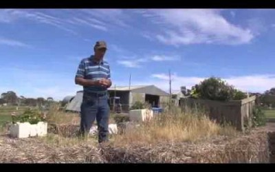 Large Scale Worm Composting with David Davidson