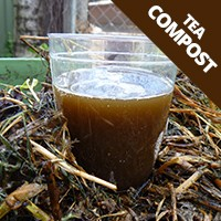 Compost and Compost Teas