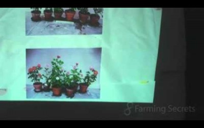 Visual results in plant growth when struck at different times in the lunar cycle Part 3 of 6