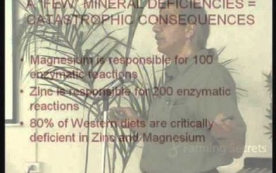 What do minerals do?