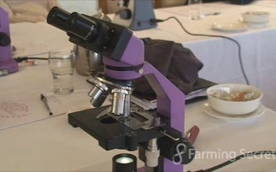 What is a Good Microscope for Soil, Compost and Compost Tea Analysis?