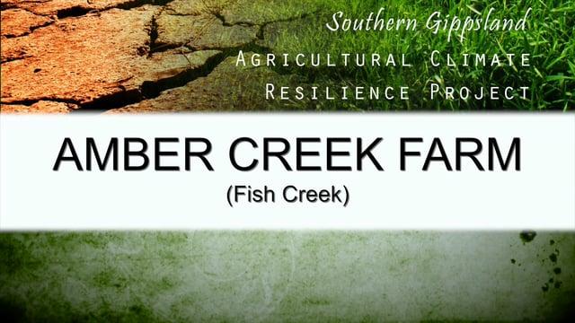 The Amber Creek Case Study