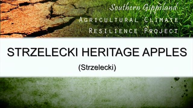 The Strzelecki Heritage Apples Case Study