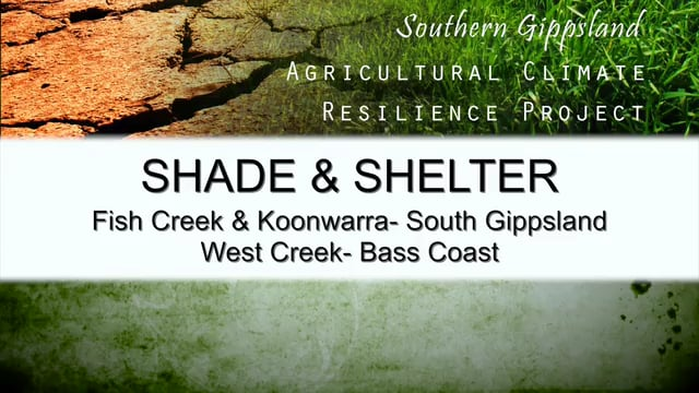 The Shade and Shelter Case Study