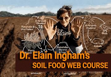 Soil food online web course
