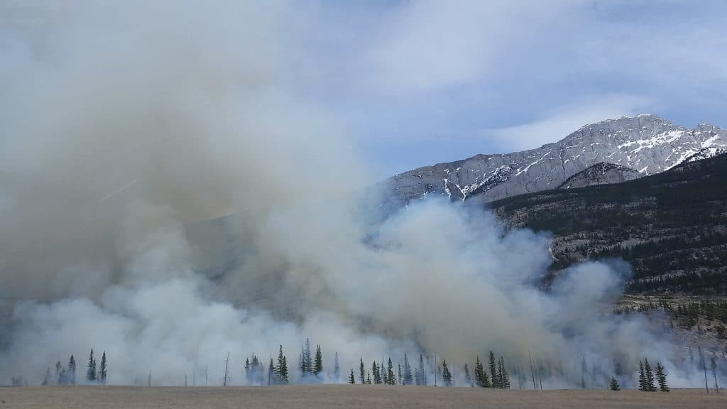 farmers recover wildfires